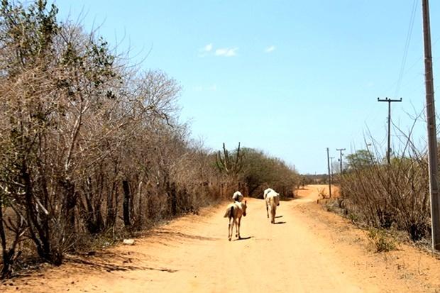 Dos 459 municípios em situação de extrema pobreza do Brasil, 88 estão no Piauí; veja a lista